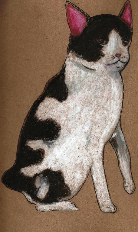The Japanese Bobtail cat